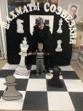Давид с Шахматным королем.jpg