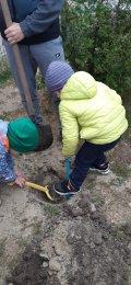 """В """"Созвездии"""" нашли идеальное место для посадки дерева"""